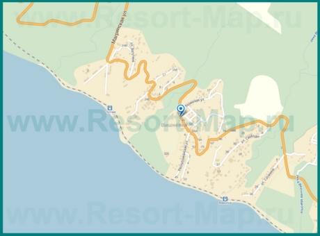Подробная карта Вишневки с улицами и домами