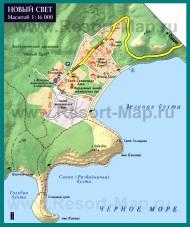 Карта поселка Новый Свет