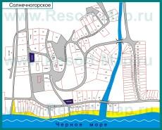 Подробная карта поселка Солнечногорское с улицами и домами